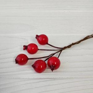 шиповник ягода 12мм
